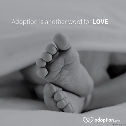 Adoption Quotes Templateadoption Wiki